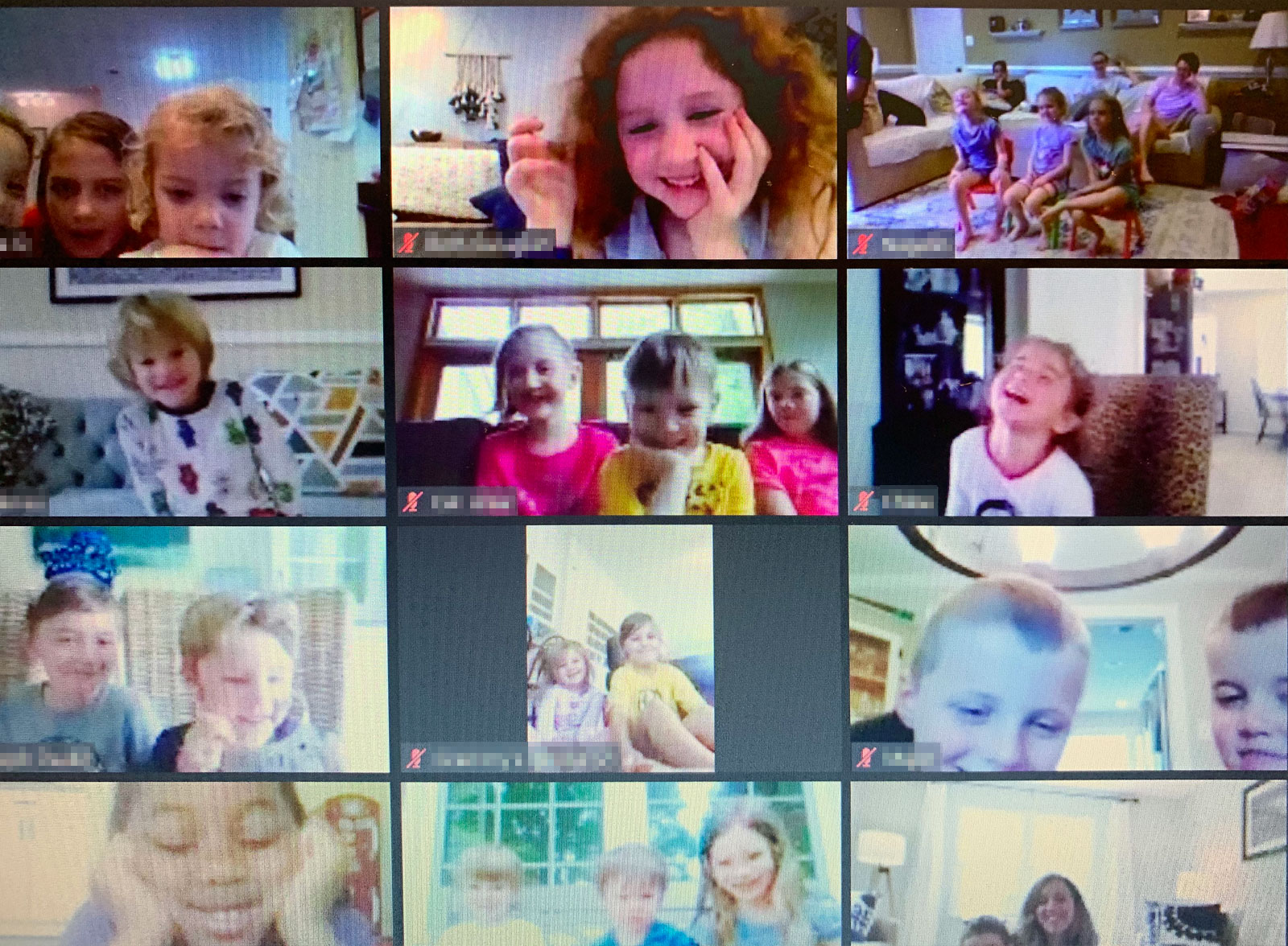 Virtual birthday parties with The Great Zucchini!